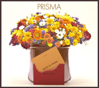 Prismaジャケット(small).jpg