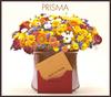 Prisma_cd1.jpg