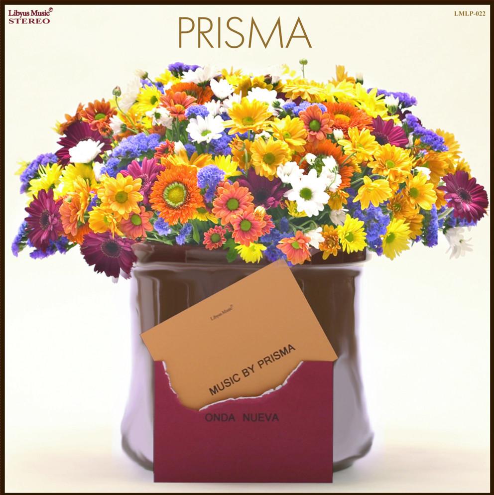 PRISMA_12inch.jpg